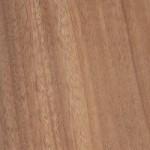 Khaya african mahogany